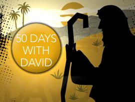 50 Days With David